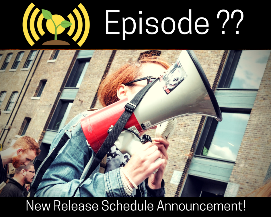 New Release Schedule Announcement!