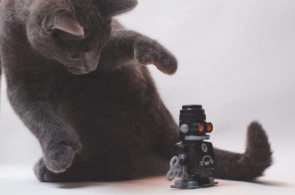 52-Week Photography Challenge | Week 3: Black & White