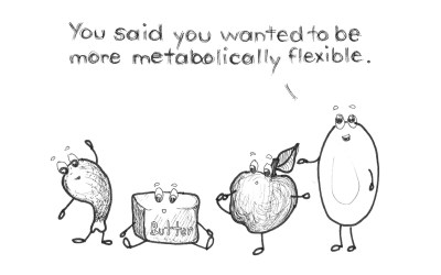 Metabolic flexibility: Why there is no ideal macronutrient combination