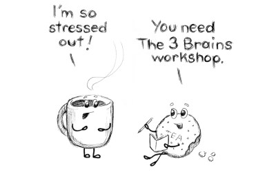 Are you or your employees or co-workers stressed out? Our 3 Brains Workshop is here to help!