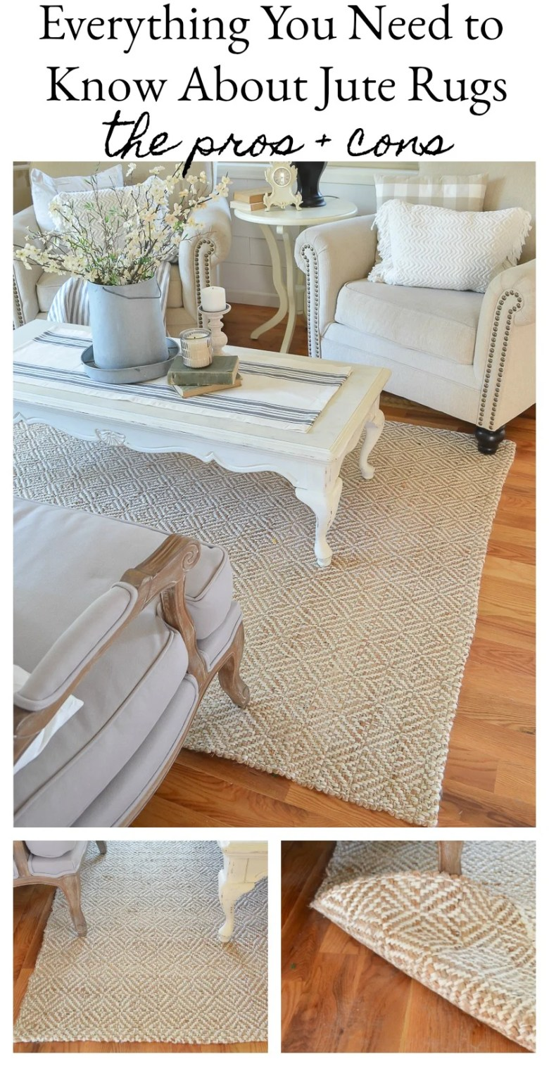 Everything you need to know about jute rugs. A full review with pros and cons of buying a jute rug.