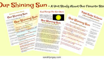 Our Shining Sun – a Unit Study