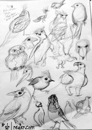 birds, birds birds