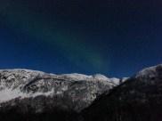 Northern Lights...a bit elusive