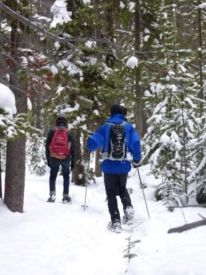 Snowshoe adventure Yellowstone