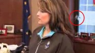 Palin with Jewish flag in background