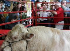 Sarah visits bull winner at Iowa state fair