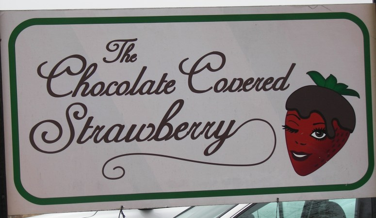 Chocolate Covered Strawberry: Day Two of Staycation