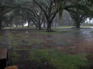 Flooding in Our Yard
