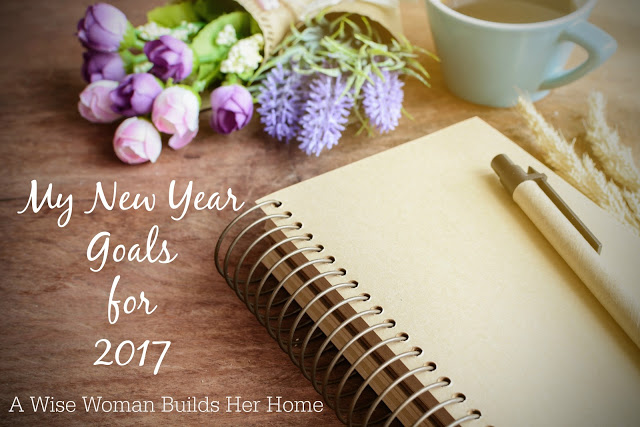 My New Year Goals for 2017 By A Wise Woman Builds Her Home