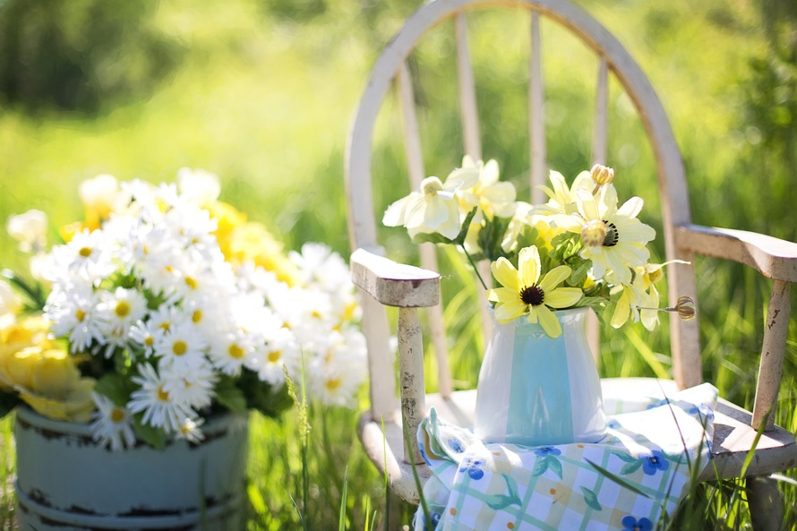 summer-still-life-daisies-yellow-large
