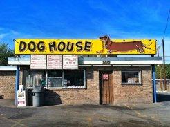 DogHouse1KellyRyan