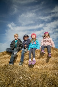 At the top of the hay bay hill at the pumpkin patch.