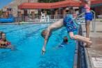 Diving Beau