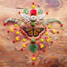 Butterfly Altar