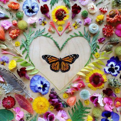 Monarch Heart