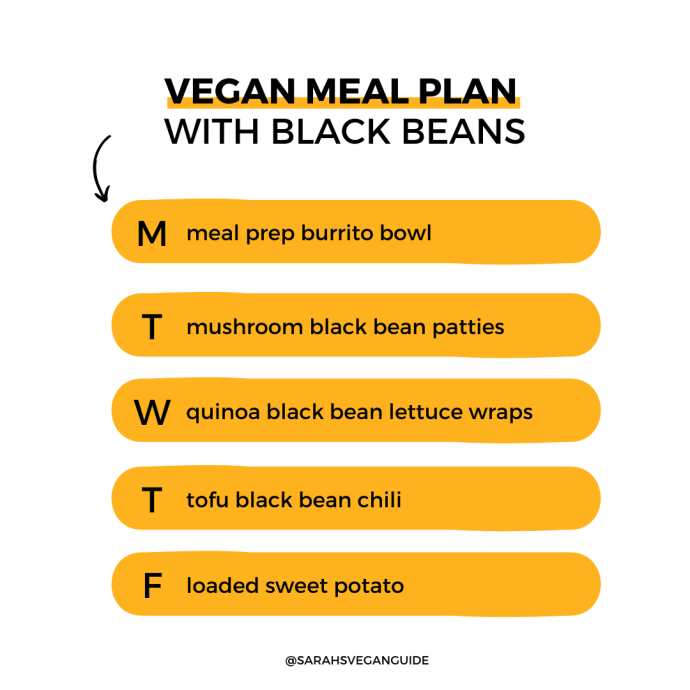 5-Day Vegan Meal Prep With Black Beans