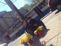Daffodil vendor in the capital city
