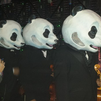 Pandas Backstage. http://t.co/GIs3B1WY65