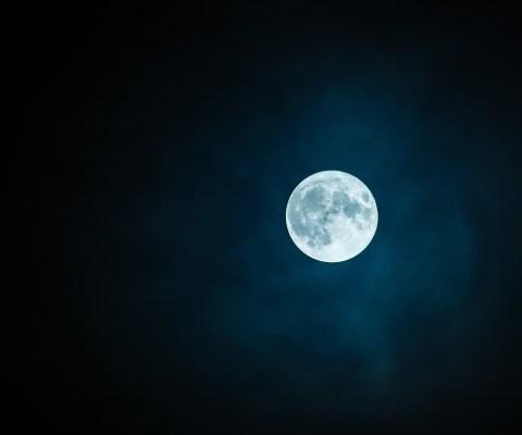 #NewTuneThursday: Face in the Moonlight