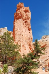 hoodoo up close, bryce canyon, utah