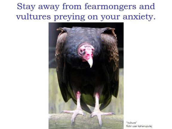 """Stay away from fearmongers and vultures preying on your anxiety"" and a photo of a vulture."