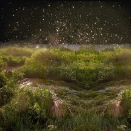 Converging Fields - a surreallist landscape collage by Sarah Zar