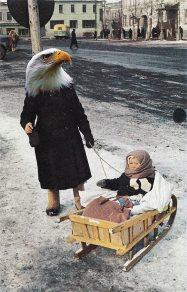 bird nanny collage