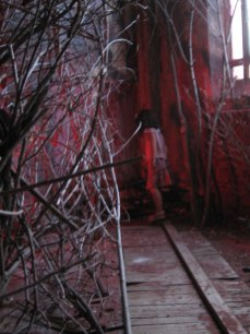 Sarah Zar created a red forest installation inside a church for Grand Street Community Arts Center in Albany, NY