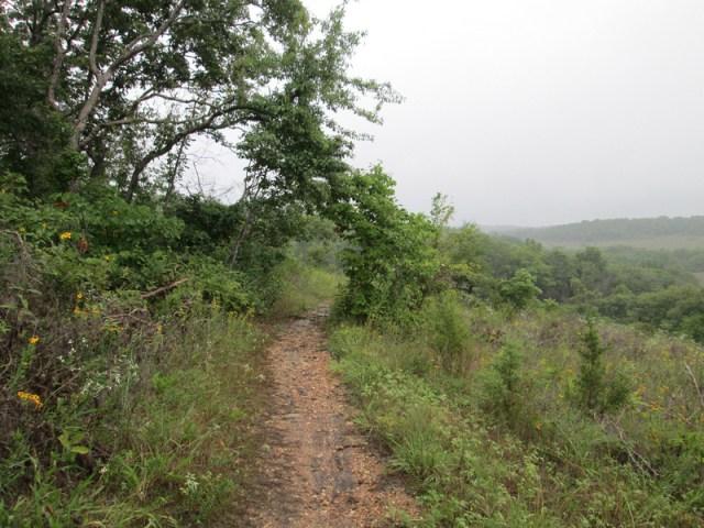 Sara L.: Valley View Glade 8-9-14 &emdash;