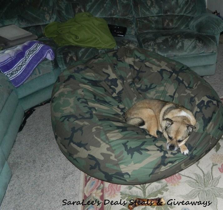 Duke in the sack chair