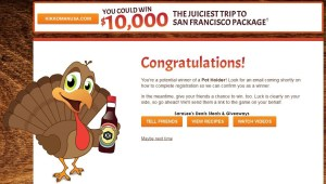 Kikkoman - 2014 Juicy Bird Sweepstakes