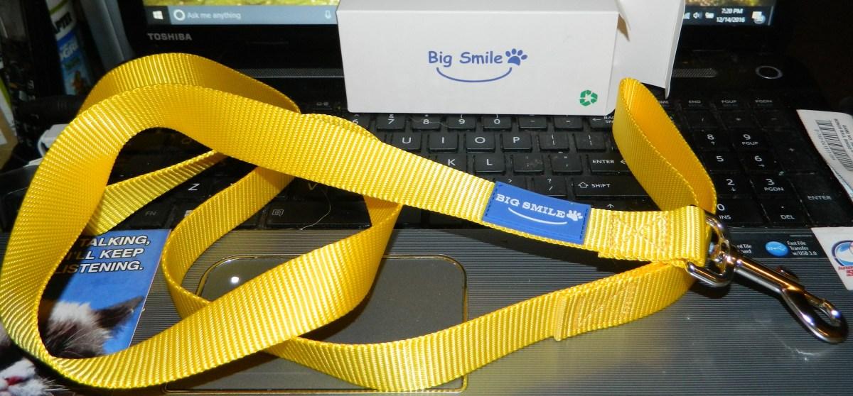 BIG SMILE PET