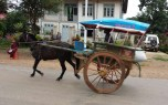 Horse drawn carriage in use near Inle Lake.