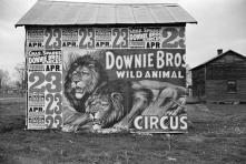 Evans Circus Vernacular SASA