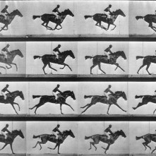 Eadweard-Muybridge-horse-galloping-1024x789