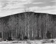 Aspen-Valley-New-Mexico-1937-NM-AV-2G