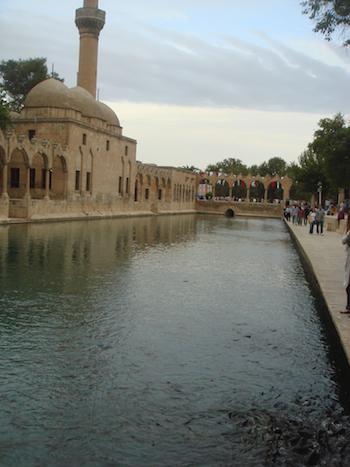 Balıklı Göl, Urfa