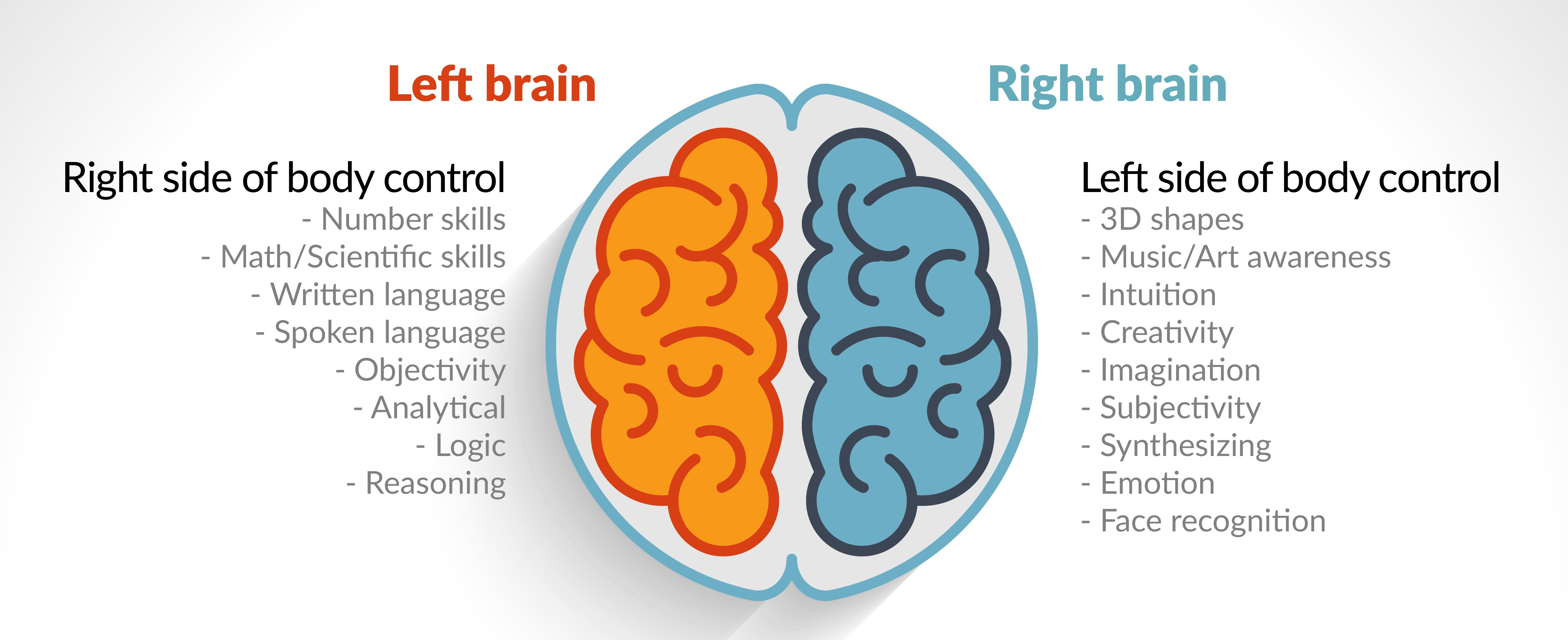 Workshop In January On Right And Left Brain