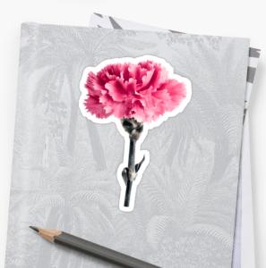 Pink Carnation flower stickers