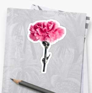 Pink Carnation floral art stickers