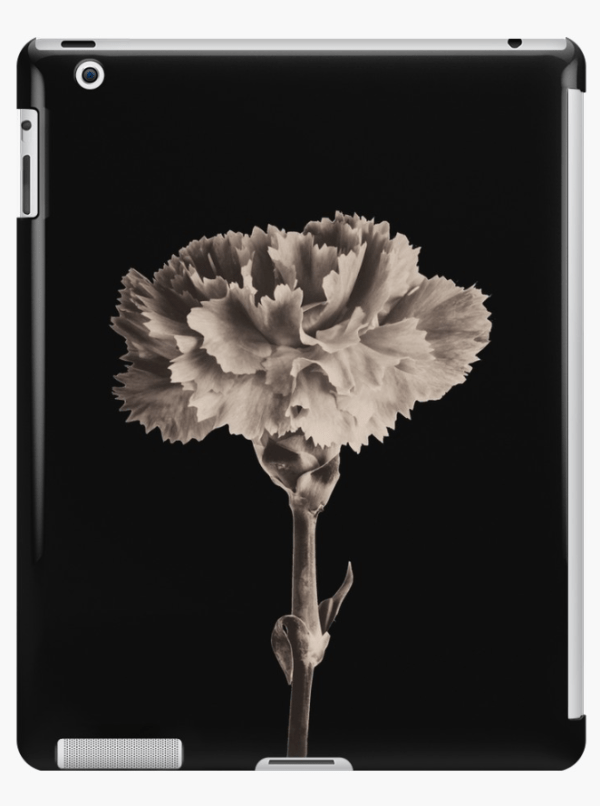 sepia carnation iPad cases