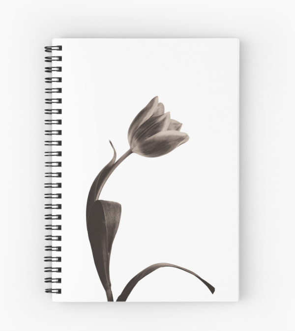 Sepia Tulip notebook