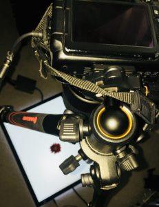 lightpad photography in 2018