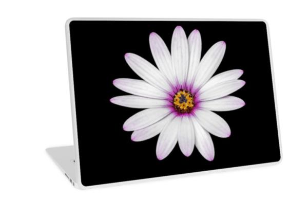 African Daisy Laptop Skin