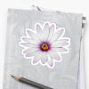 African Daisy small sticker