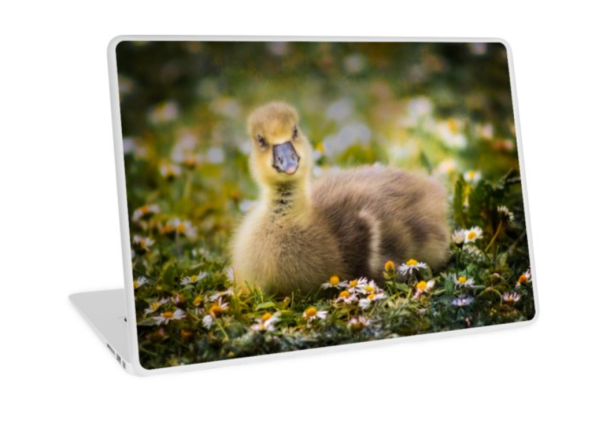 gosling laptop skin