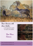 Autumn nature and wildlife