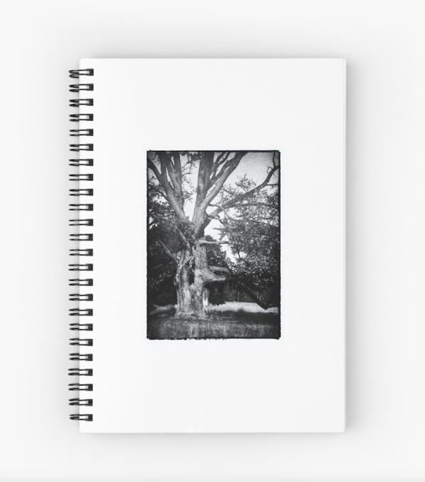 Spooky Tree Notebook