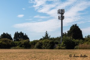 Mobile phone mast used for stock images